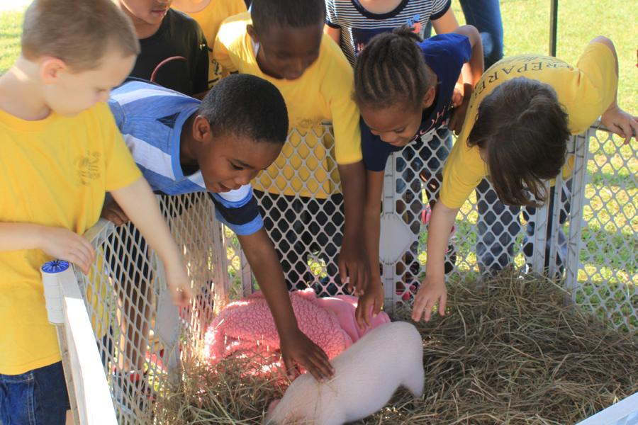 Student+from+Montevallo+Elementary+pet+a+mini+pig+at+Farm+Day.
