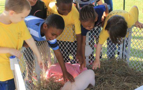 FFA holds annual Farm Day