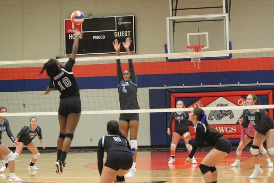 Lady Dogs fall in rivalry game
